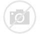 Image result for 双特异性抗体