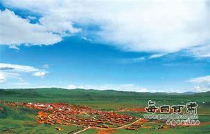 甘南县新闻网 的图像结果