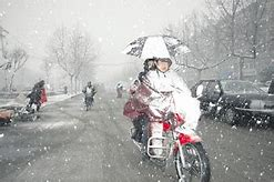 淄博市新闻网 的图像结果