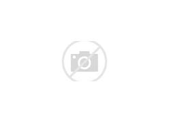 郑州八中 的图像结果