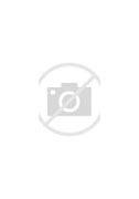 佛山市顺德区均安中学 的图像结果