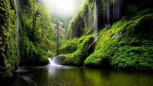 Spring, Landscape, Waterfall, In, Oregon, Usa, Nature, River, Water, Trees, Foliage, Desktop, Wallpaper