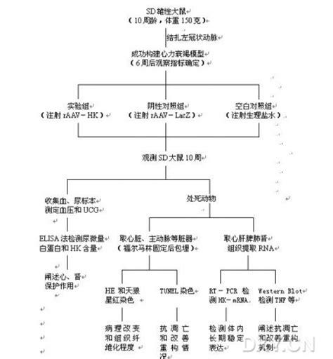 合肥seo网站365棋牌游戏爆分图_365棋牌手机解绑_365棋牌绑定手机收不到验证码748