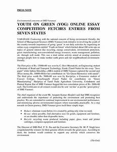 essay about healthy diet technical cv writing service essay about  essay about healthy diet make it a habit for life lyrics
