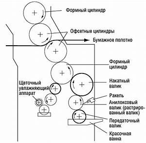 При вирусе папилломы препараты